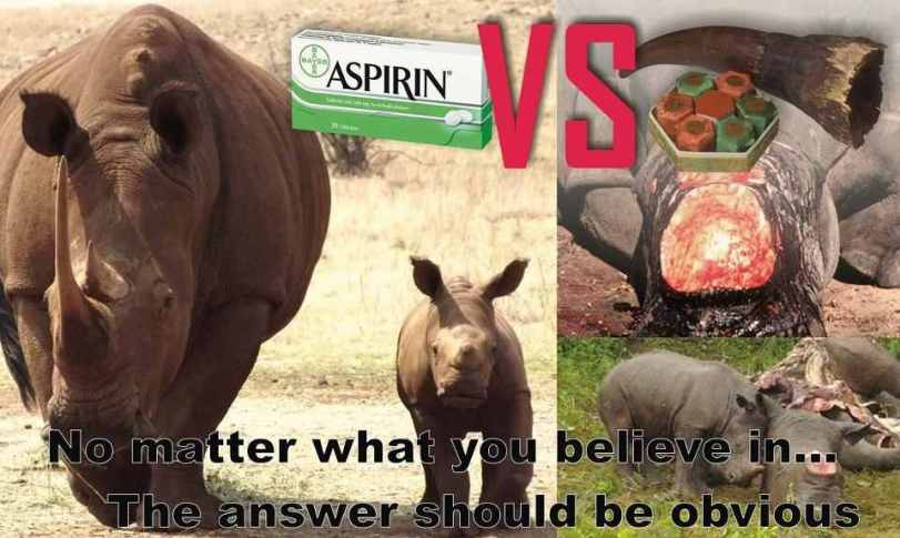 Rhino horn, is not medicine...