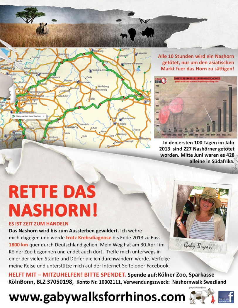 German flyer for gabywalksforrhinos