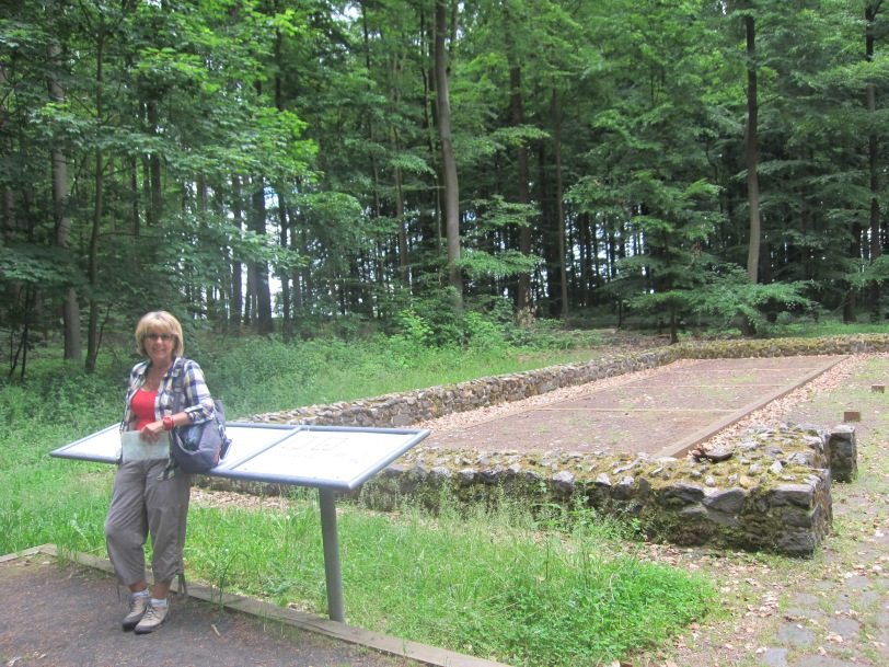 Limes - site of Roman fort in the forest