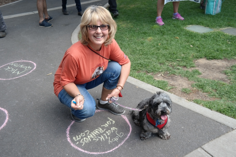 Chalking support for rhinos and elephants